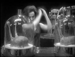 Barbara smashes the Brains of Morphoton