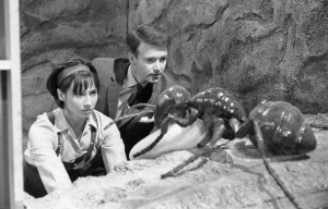 Ian and Susan are confronted by a giant ant